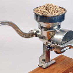 Grains Processed--Specialty